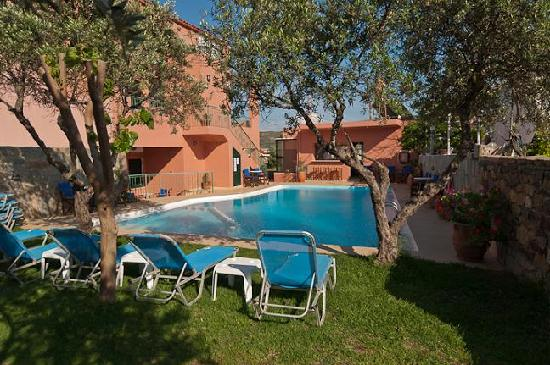 Olive Tree Apartments: Sundecks & Pool