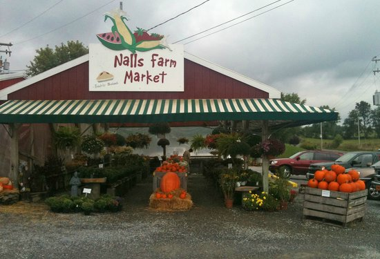 Nalls Farm Market: Fall Fowers Available