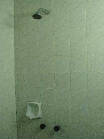 Century Hotel: Shower Fixtures
