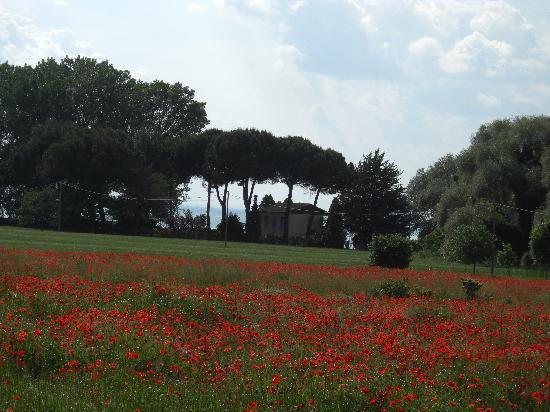 La Rocca Residence di Ragni Mauro: am Lago Trasimeno