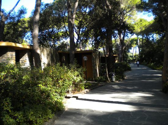 Hotel Residence Roccamare: un viale