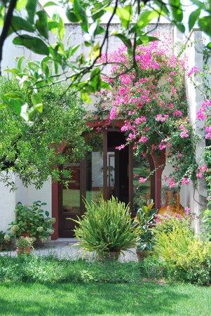 Tuglie, Italy: Ingresso residenza