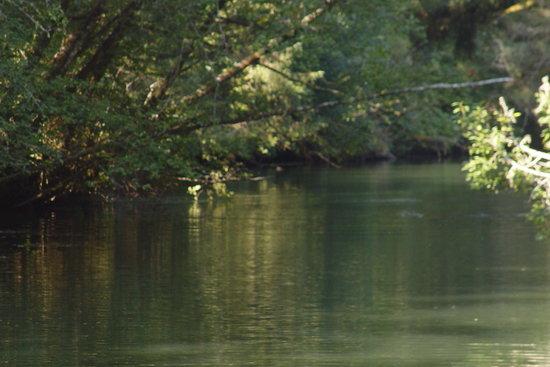 Siltcoos Lake: Siltcoos Water Way