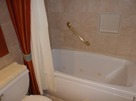 โกลเด้นนักเกต: Bathroom 1