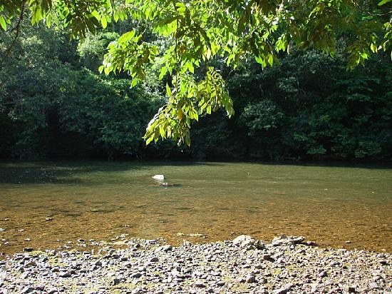 Table Rock Jungle Lodge: Macal River at Table Rock