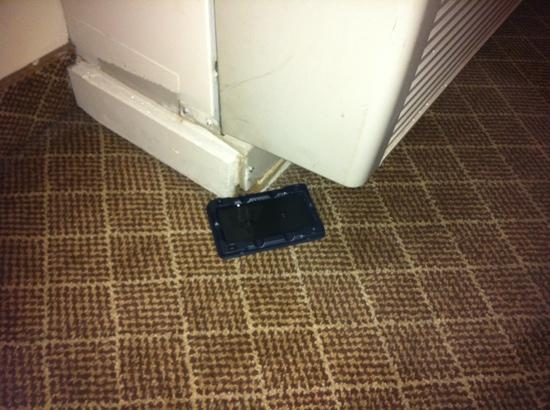 Radisson St. Joseph : mice trap