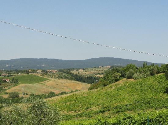 Agriturismo Marciano: View of Coutryside
