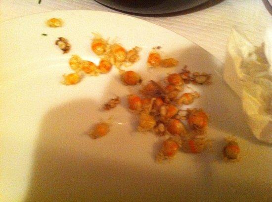 Chez Jérôme Crêperie : les crabes dans mes moules, et encore j'en ai mangé la moitié...