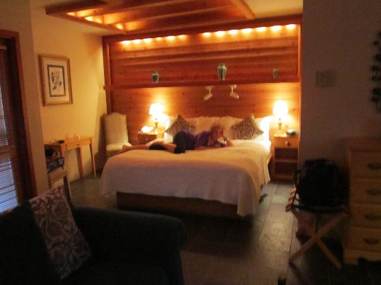 Sonoma Coast Villa & Spa: Our cozy room