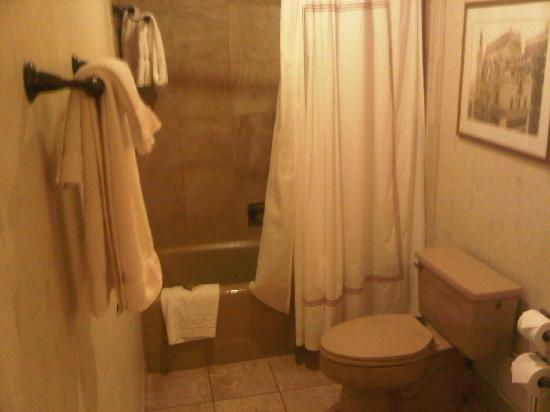 Old Fashioned Bathroom Picture Of The Adolphus