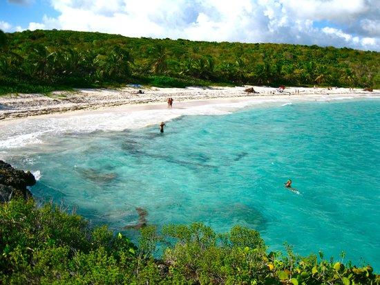Isla De Vieques Puerto Rico Navio