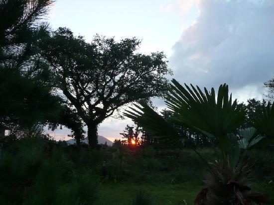 Joy Ville Resort: View from Joyville