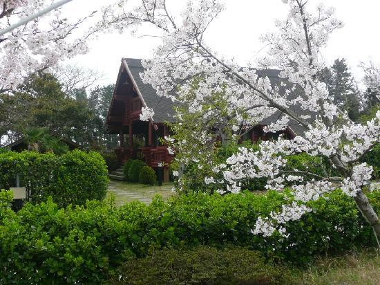 Joy Ville Resort: Swiss cottage