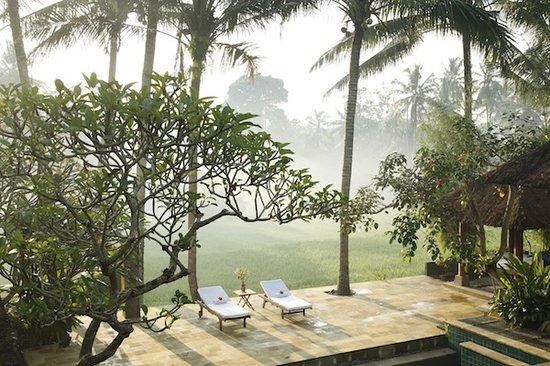 Villa Areklo: View Terrace