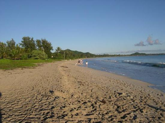 Kailua Beach Park: Walking our dog at Kailua Beach in the morning