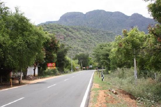 Zest @ Coakers Villa : Beautiful road up to Kodai - beginning of the ghats