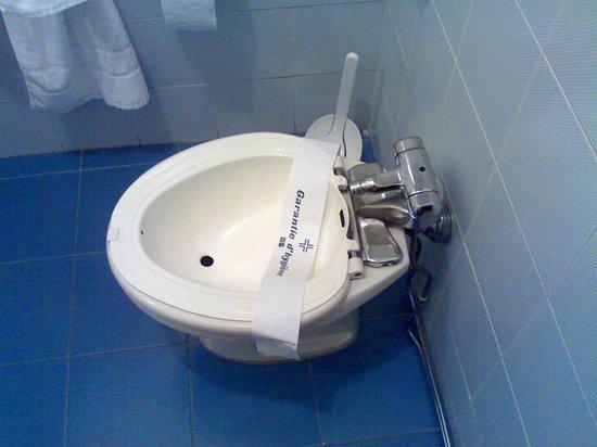Hotel Baccio da Montelupo : il vaso sanitario 1