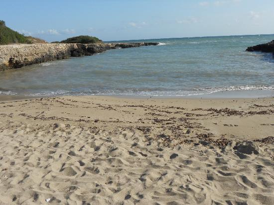 Marina Di Ostuni, Italia: One of the beautiful coves