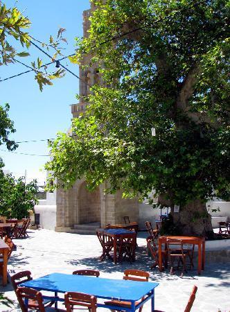 Platanos Taverna: sitting under the old platanos tree