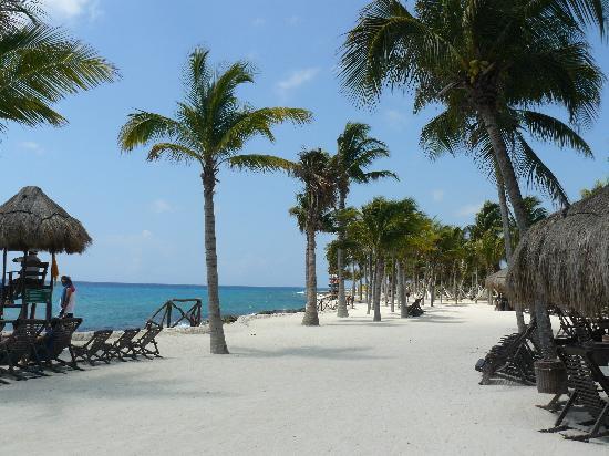 Occidental at Xcaret Destination: Xcaret Eco Park - Local Trip on Resort