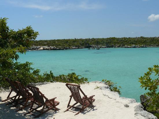 Occidental Grand Xcaret All Inclusive Resort: Xel Ha Eco Park - Local Trip from Resort