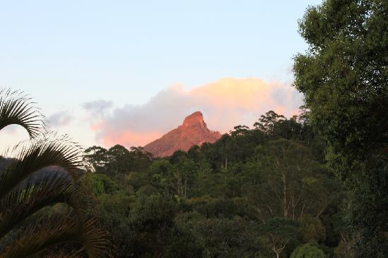 Amazing Wollumbin Palms Retreat at Mt Warning: The Sunrise over Mt Warning