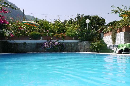 Hotel Villa Janto: piscina