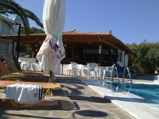Paradise Primavera Apartments: bar and pool