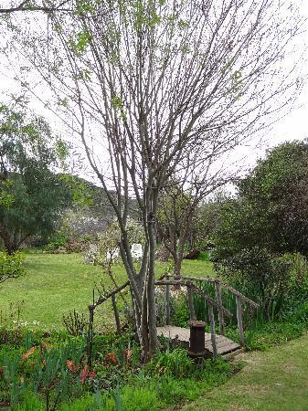Tradouw Guest House: Garden