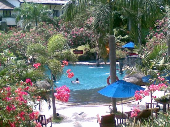 Novotel Surabaya Hotel and Suites : Pool and garden 1