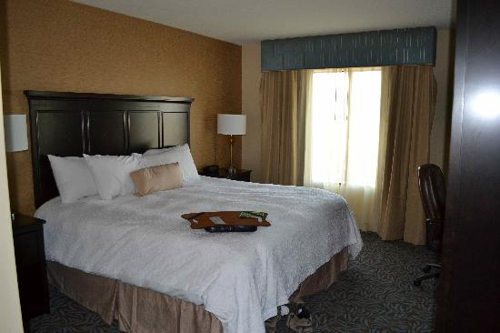 Hampton Inn & Suites Carlsbad: King bed on 4th floor suite