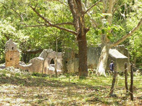 Jumba la Mtwana: more ruins
