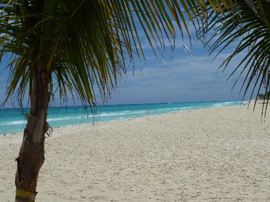 Grand Bahia Principe Coba: beach in Playa de Carmen