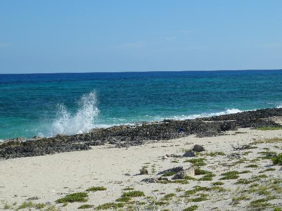 Grand Bahia Principe Coba: shot while touring Cozumel
