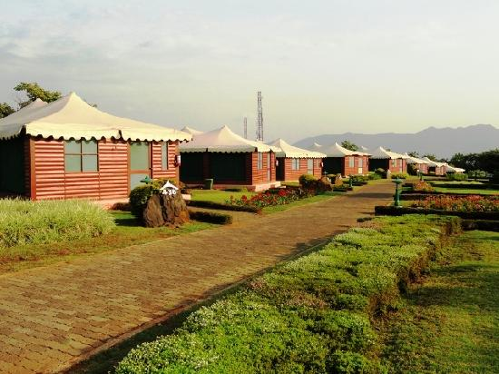 Aamby Valley City: view