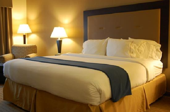 Holiday Inn Express Hotel & Suites Madison-Verona : Nice and Comfy Bed