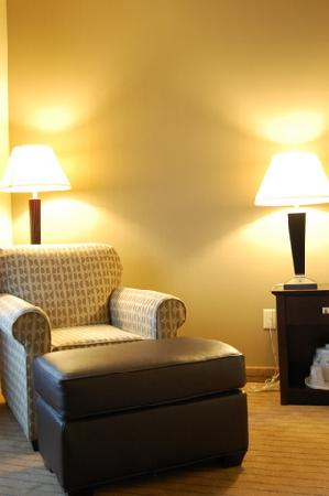 Holiday Inn Express Hotel & Suites Madison-Verona: Room Chair