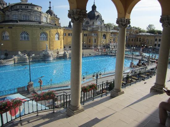 Széchenyi Baths and Pool: lap pool
