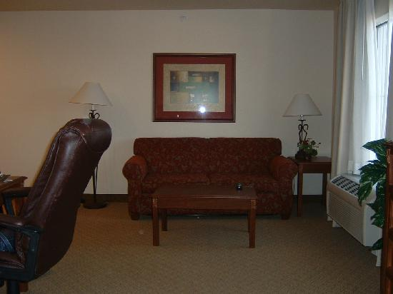 Homewood Suites by Hilton Fargo : Love seat with pull out bed.