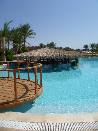 TUI Magic Life Sharm el Sheikh: Swim up bar