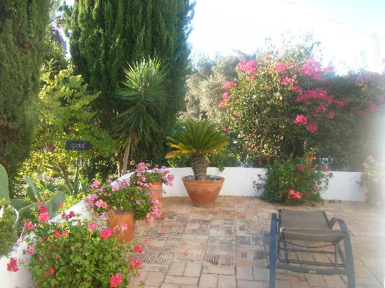 Quinta Bonita Luxury Boutique Hotel: Our patio