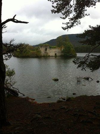 Rothiemurchus: castle at loch an eilen