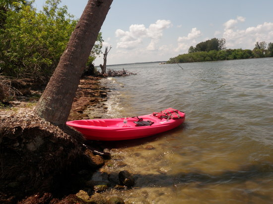 Fish Tales Tours : The single kayak sitting on the beach at the Island we kayaked to.