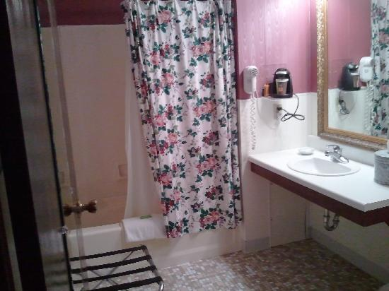 Plaza Motor Motel: Bathroom