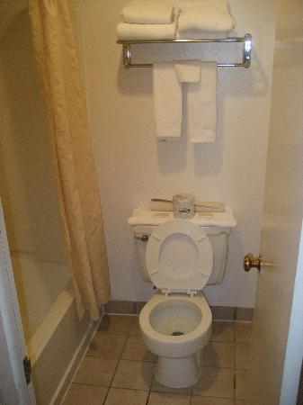 Antler Inn: Toilet and tub in one room