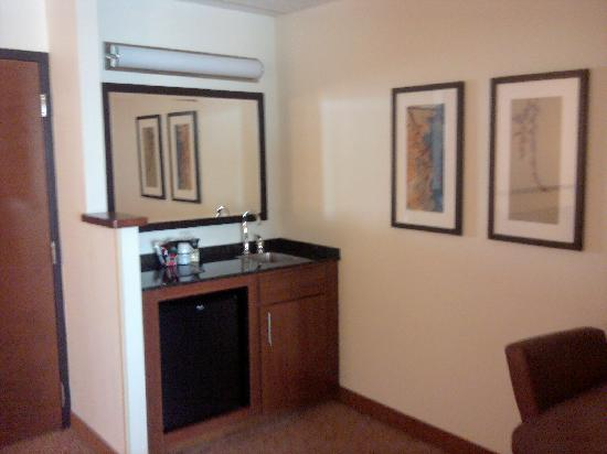 Hyatt Place Charlotte Airport/Tyvola Road: Wet Bar (not stocked)