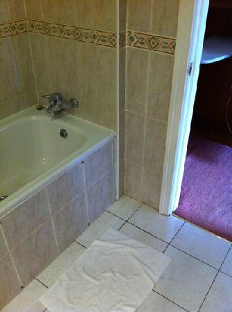 Ashbourne Court Hotel: bathroom