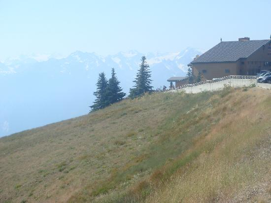 Hurricane Ridge: Visitor center and good food with picnic tables