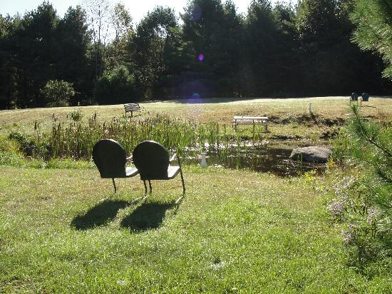 Alynn's Butterfly Inn B&B: little pond with sitting area out back