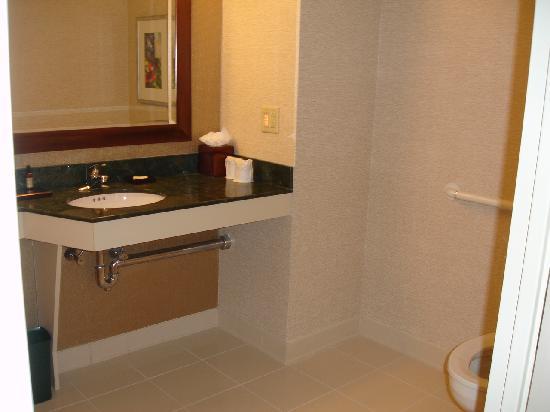 Boston Marriott Quincy: Bathroom (handicapped room I think)